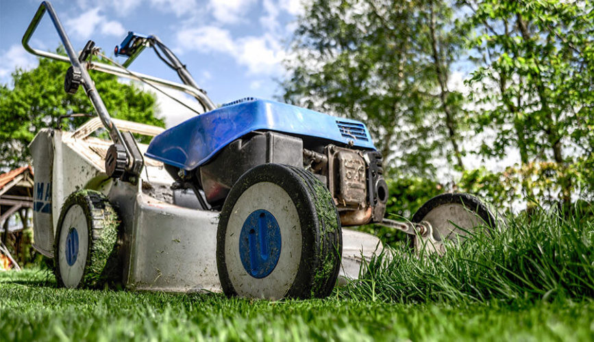 Essential tools for your lawn and garden